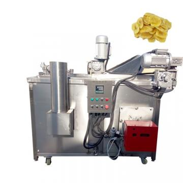 Food Production Equipment Ce Semi-Automatic Onion Deep Frying Machine